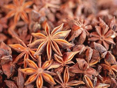 八角茴香的功效与作用及药膳做法