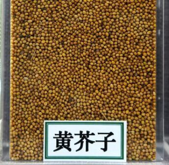 黄芥子的功效与作用及药膳做法