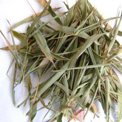淡竹叶的功效与作用及药膳做法