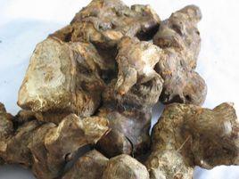 土茯苓的功效与作用及药膳做法