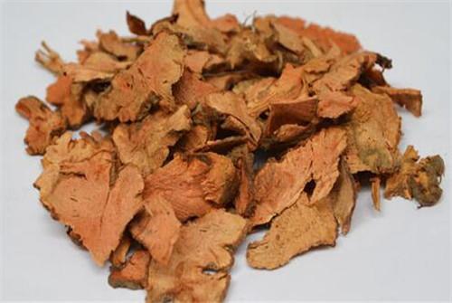 金荞麦的功效与作用及药膳做法