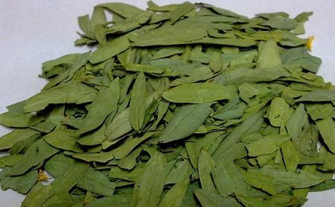 番泻叶的功效与作用及药膳做法